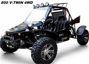 BMS Panther 800 V-Twin Dune Buggy 2WD 4WD